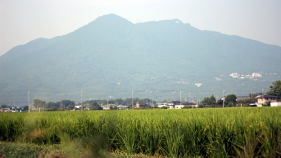 筑波山ガマまつり