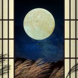 お月見フリーイラスト素材集5選 うさぎ、十五夜、月見団子などが無料で使えます