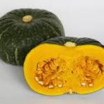 かぼちゃ3種類27品種まとめ|甘くておいしい種類をチェック、特徴が色々あって面白い