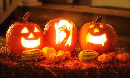 ハロウィンのかぼちゃの種類って何?大きすぎるかぼちゃの品種・名前・作り方について