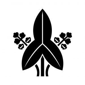 中村の家紋の由来・意味を画像で説明!丸に違い鷹の羽の由来は?