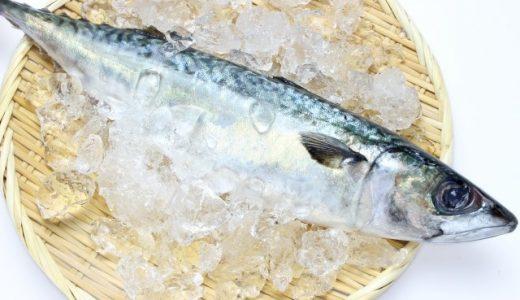 鯖の保存方法を常温・冷蔵・冷凍でまとめてみた