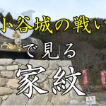 小谷城の戦い