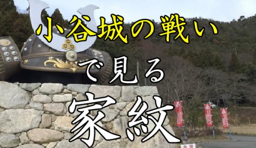 小谷城の戦い|家紋で見る合戦シリーズvol.9
