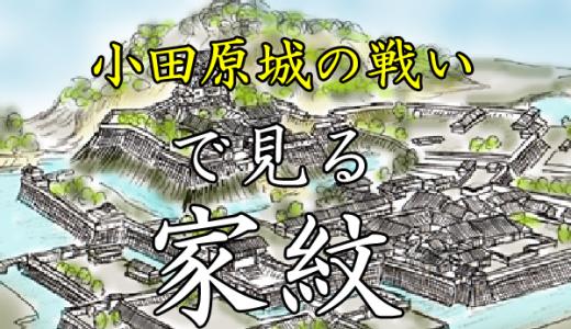 小田原城の戦い|家紋で見る合戦シリーズvol.23