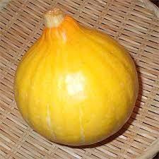 コリンキーかぼちゃの特徴・旬の時期などまとめ