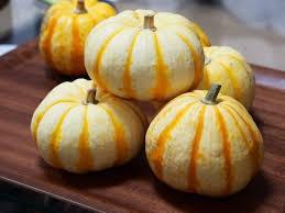 プッチィーニかぼちゃ