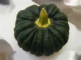 菊座かぼちゃの特徴・旬の時期などまとめ
