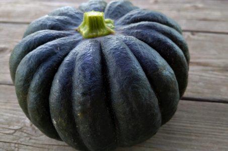 小菊かぼちゃの特徴・旬の時期は?おススメレシピ紹介|会津の日本カボチャ