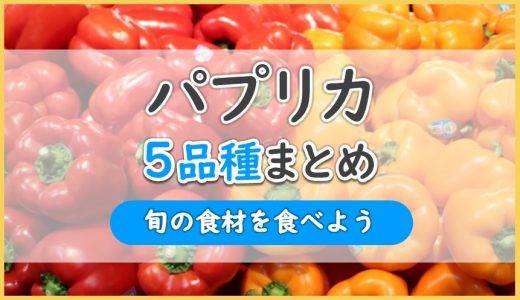 パプリカは8色ある!?5品種を解説|特徴・旬の時期・栄養成分・おススメレシピまとめ