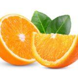 【2020年】オレンジの消費量ランキング!日本一は何県?47都道府県別ではどこが多い?