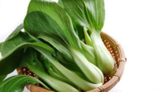 チンゲン菜の保存方法まとめ|冷蔵・冷凍・常温での保存期間の目安はどのくらい?