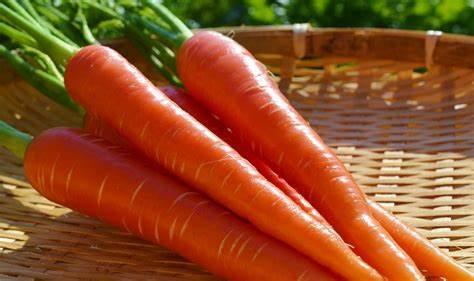 京くれないの特徴・旬の時期は?優しい甘さで温野菜に使われる地域ブランドにんじん