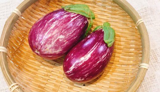 ゼブラなすの特徴・旬の時期は?|イタリア品種のなす