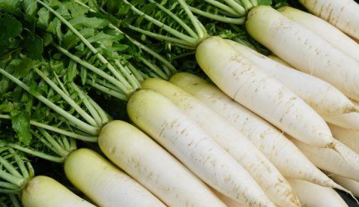 大根の栄養成分と効能とは?