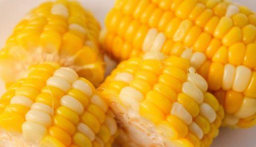 バーベキューコーンの特徴・旬の時期まとめ|食味と品質のよいとうもろこしのバイカラー種