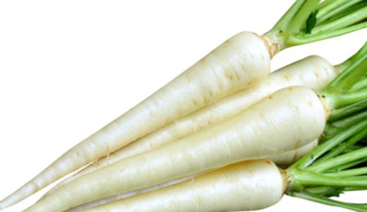 カラーニンジン(カラフルキャロット)ホワイトハーモニーの特徴・旬の時期は?ソテーに使われる東洋種にんじん