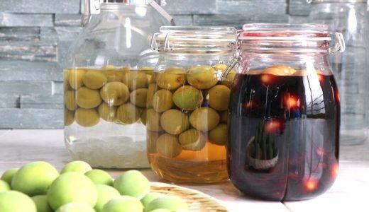 梅シロップの残った梅リメイクレシピ3種まとめ|梅はいつ取り出す?