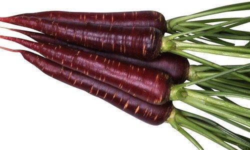カラーニンジン(カラフルキャロット)バイオレットハーモニーの特徴・旬の時期は?スティックサラダに使われる東洋種にんじん