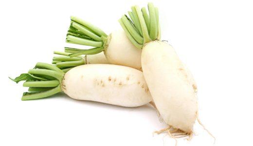辛味大根の特徴・旬の時期は?強い辛味が特徴の8種類の主な品種の大根
