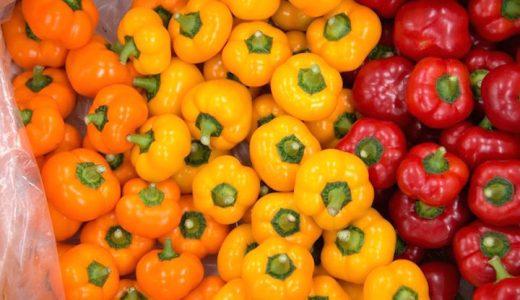 セニョリータの特徴・旬の時期まとめ|トマトのような見た目のピーマン