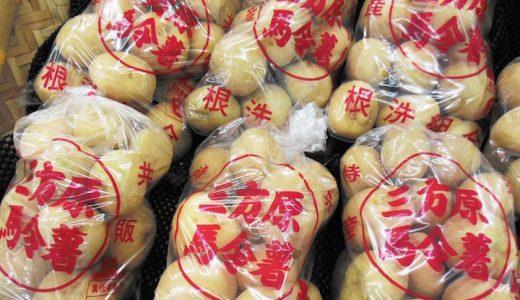 三方原馬鈴薯の特徴・旬の時期は?静岡生まれのしっかりした甘みのあるほくほく系じゃがいも