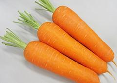 愛紅にんじんの特徴・旬の時期は?肉質柔らかくサラダに使われる東洋種にんじん