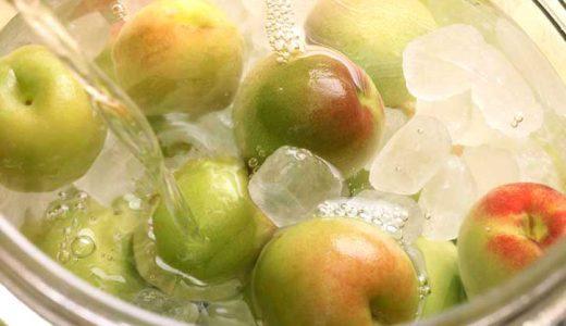 梅シロップに使う梅は何がいい?梅シロップに適した梅と適さない梅をご紹介