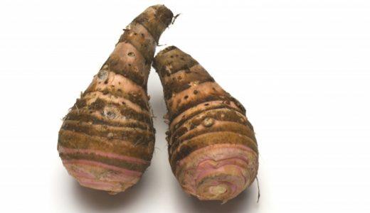 海老芋の特徴・旬の時期は?京都の伝統野菜のねっとり系さといも
