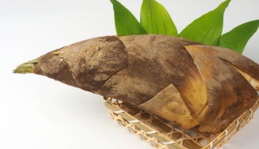 孟宗竹の特徴・旬の時期まとめ|アクが強い国内産たけのこの代表種