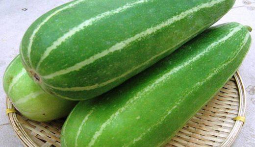 玉造黒門越瓜の特徴・旬の時期は?|本州でメインに作られるうりを紹介