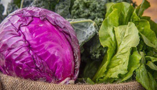 紫キャベツ(レッドキャベツ)の特徴・旬の時期まとめ|アントシアニンが含まれる紫色のキャベツ