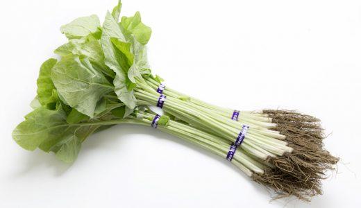 葉ごぼう(若ごぼう)の特徴・旬の時期まとめ|葉と茎と根がまるごと食べられるごぼう