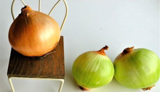 玉ねぎの皮を剥くと緑色。。それ捨てないで!実は栄養があるって知ってた?