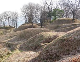 新沢千塚古墳群は見た目に楽しい古墳群!解説とアクセス・周辺おすすめランチまとめ