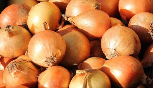 サラダたまねぎ(サラダオニオン)の特徴・旬の時期まとめ|辛くない生で食べられる白玉ねぎ