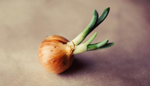 玉ねぎを食べて気になる口臭や体臭。。気になるニオイの対策と予防方法をご紹介!