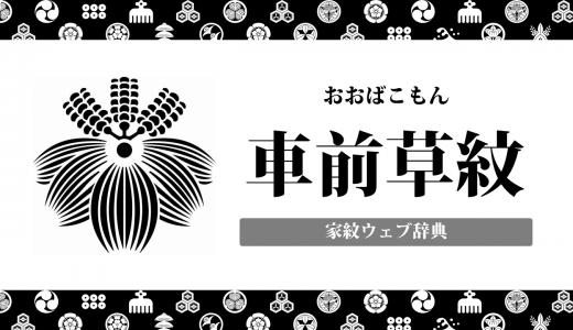 【家紋】車前草紋の意味・由来を解説!植物紋の一種