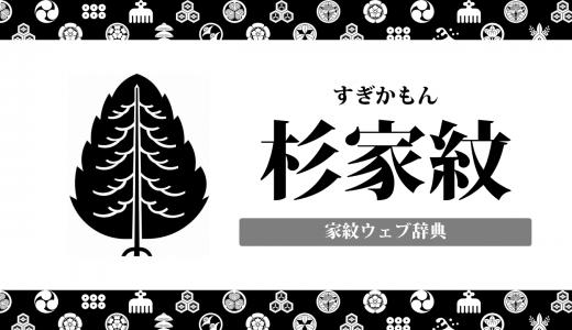 【家紋】杉紋の意味・由来を解説!植物紋の一種