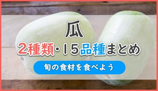 瓜を2種類15品種でまとめ解説!おいしいのはどれ?九州?沖縄?本州産?