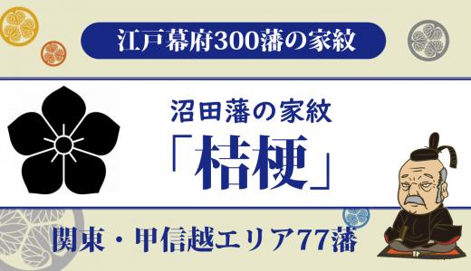 【江戸幕府300藩】沼田藩の家紋は土岐家の「桔梗」 一度廃藩となるも土岐家によって支配された