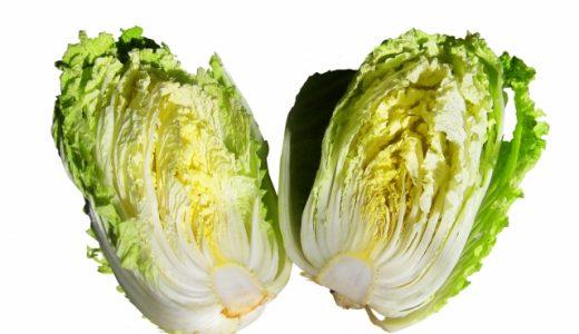 白菜が酸っぱい。これって腐ってる?腐った白菜ってどんな状態?