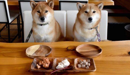 犬にごぼうを食べさせても大丈夫?与える際の注意点とは?人にもアレルギーはある?