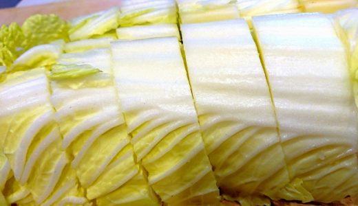 白菜のおススメレシピ10選|万能で調理しやすい白菜を使った美味しい料理!