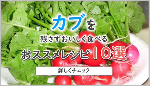 かぶのおススメレシピ10選|ほっこり優しい冬野菜・かぶを美味しく食べよう!