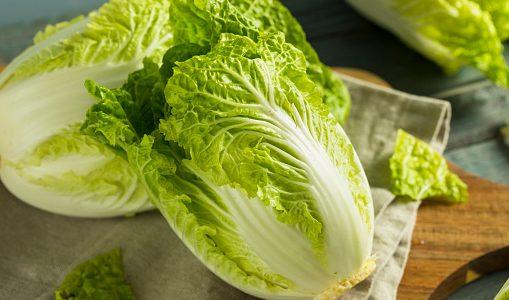 白菜が腐るとどうなる?茶色く変色・しなしな|見分け方・正しい保存方法と期限は?