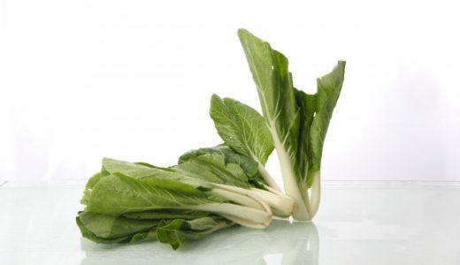 小松菜の主な栄養成分と期待できる効果・効能!美容健康に優秀な緑黄色野菜