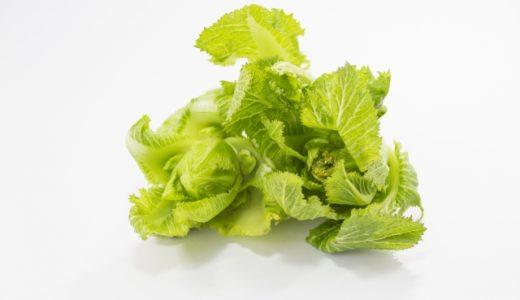 子持ち高菜(祝蕾・子宝菜)の特徴・旬の時期まとめ わき芽が食用とされる高菜の一種