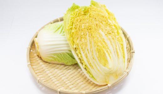 オレンジクインの特徴・旬の時期まとめ シスリコピンを含む彩り鮮やかな結球タイプの白菜