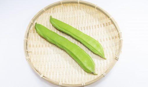なた豆が腐るとどうなる?しなしな・茶色く変色|見分け方・保存方法と期限は?